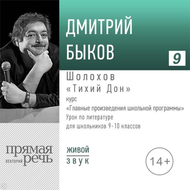Шолохов «Тихий дон». Литература. 9-11 класс