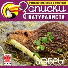 Рассказы классиков о животных. Бобры