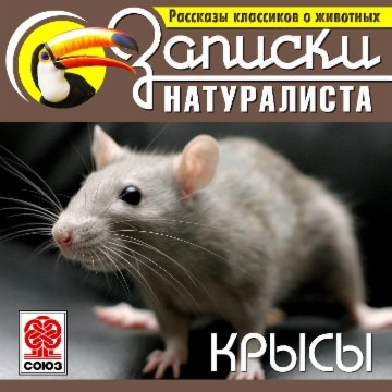 Рассказы классиков о животных. Крысы