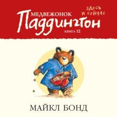 Медвежонок Паддингтон здесь и сейчас. Книга 12