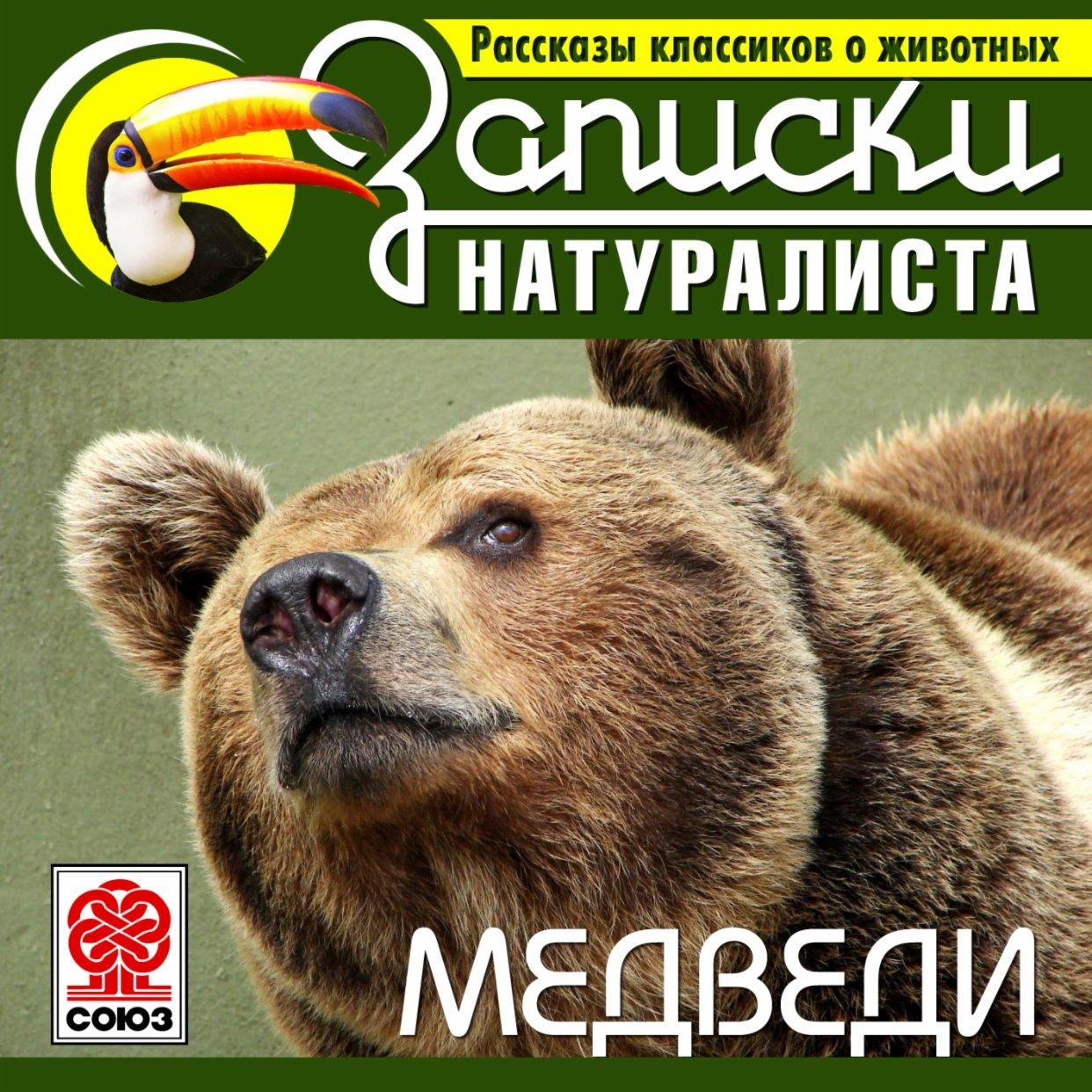 Рассказы классиков о животных. Медведи