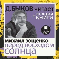 Перед восходом солнца + лекция Дмитрия Быкова
