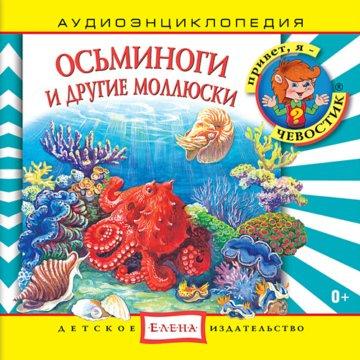 Осьминоги и другие моллюски